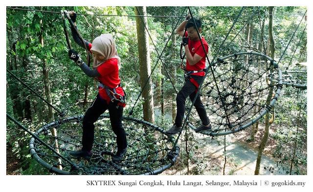 Skytrex Sungai Congkak Selangor Malaysia - Ramble and Wander