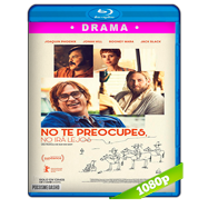 No te preocupes, no irá lejos (2018) BDREMUX HD 1080p Latino