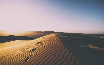 Dunes de Sable dans le Désert - Fond d'Écran en Quad HD 1440p