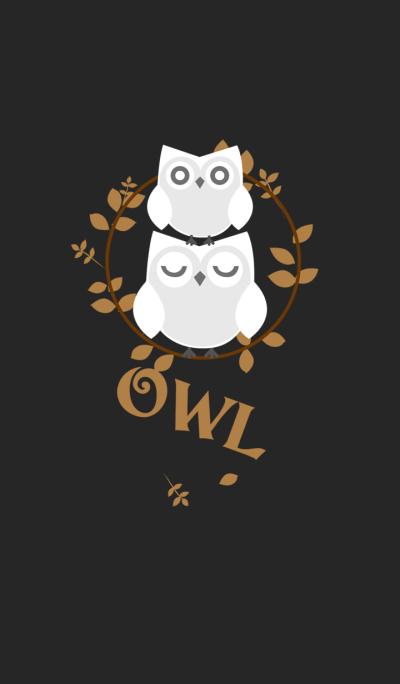 Pure white owl