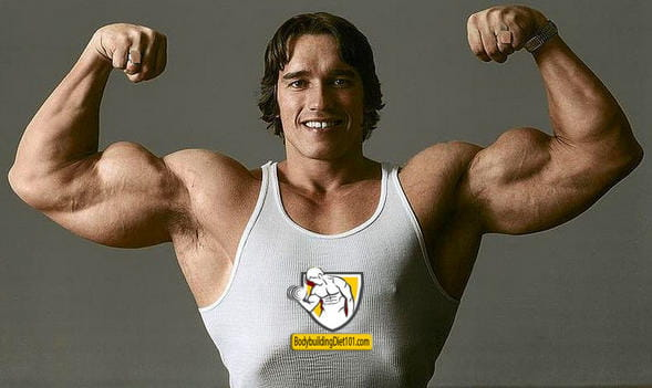 The Famous Arnold Schwarzenegger Bodybuilding Legend