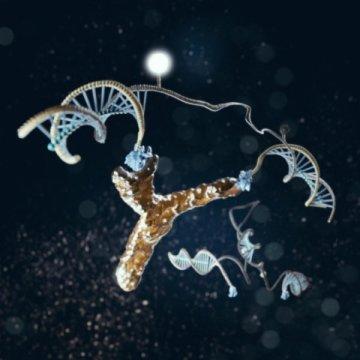 جهاز بتقنية النانو يكشف عن الإصابة بالإيدز عن طريق تشخيص الأجسام المُضادة!
