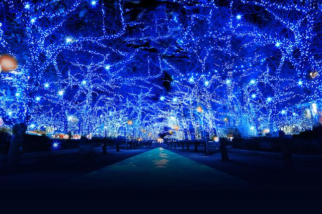 【藍色的浪漫】東京「青の洞窟」再度重來 醉人之景