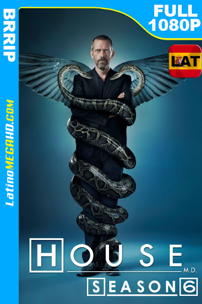 House, M.D. (Serie de TV) Temporada 6 (2009) Latino HD FULL 1080P - 2009
