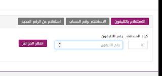 ادفع فاتورة التليفون الأرضي الآن .. فاتورة شهر يوليو 2019 عبر موقع المصرية للإتصالات billing.te.eg