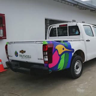 Brandeo Vehicular - Macro Print Service