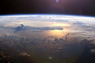 Hewan Pertama di Bumi Ikut Bertanggung Jawab pada Pemanasan Global