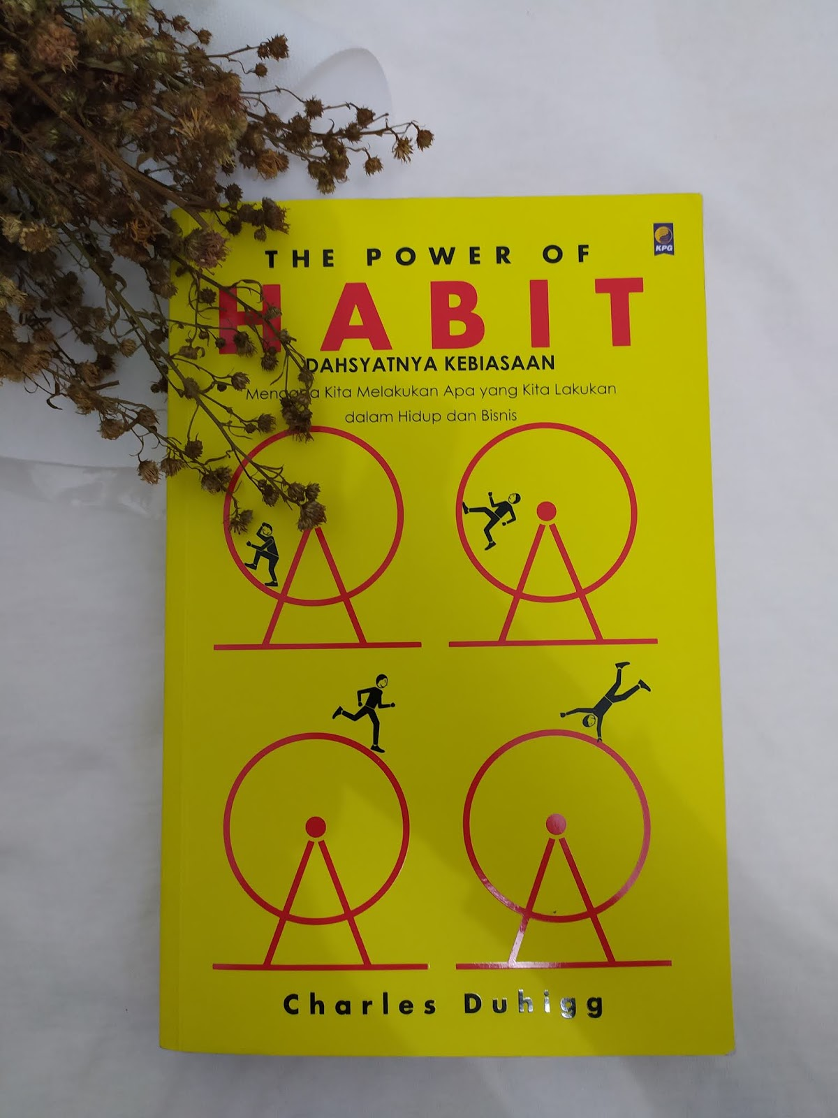 Buku-the-power-of-habit