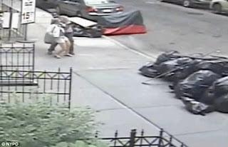 duas mulheres foram atacadas por um homem que lhe enfiou fezes nas calças