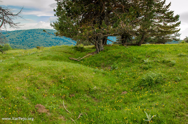 WW1 Trenches - Kravica locality - Mariovo region - Macedonian - Greek border line