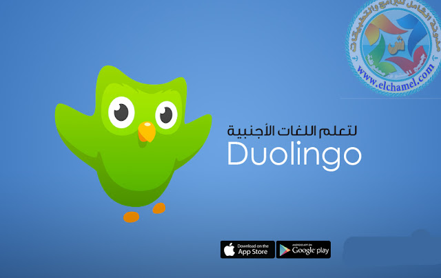 تعلم اللغات الأجنبية بسهولة مع تطبيق ديولنجو Duolingo