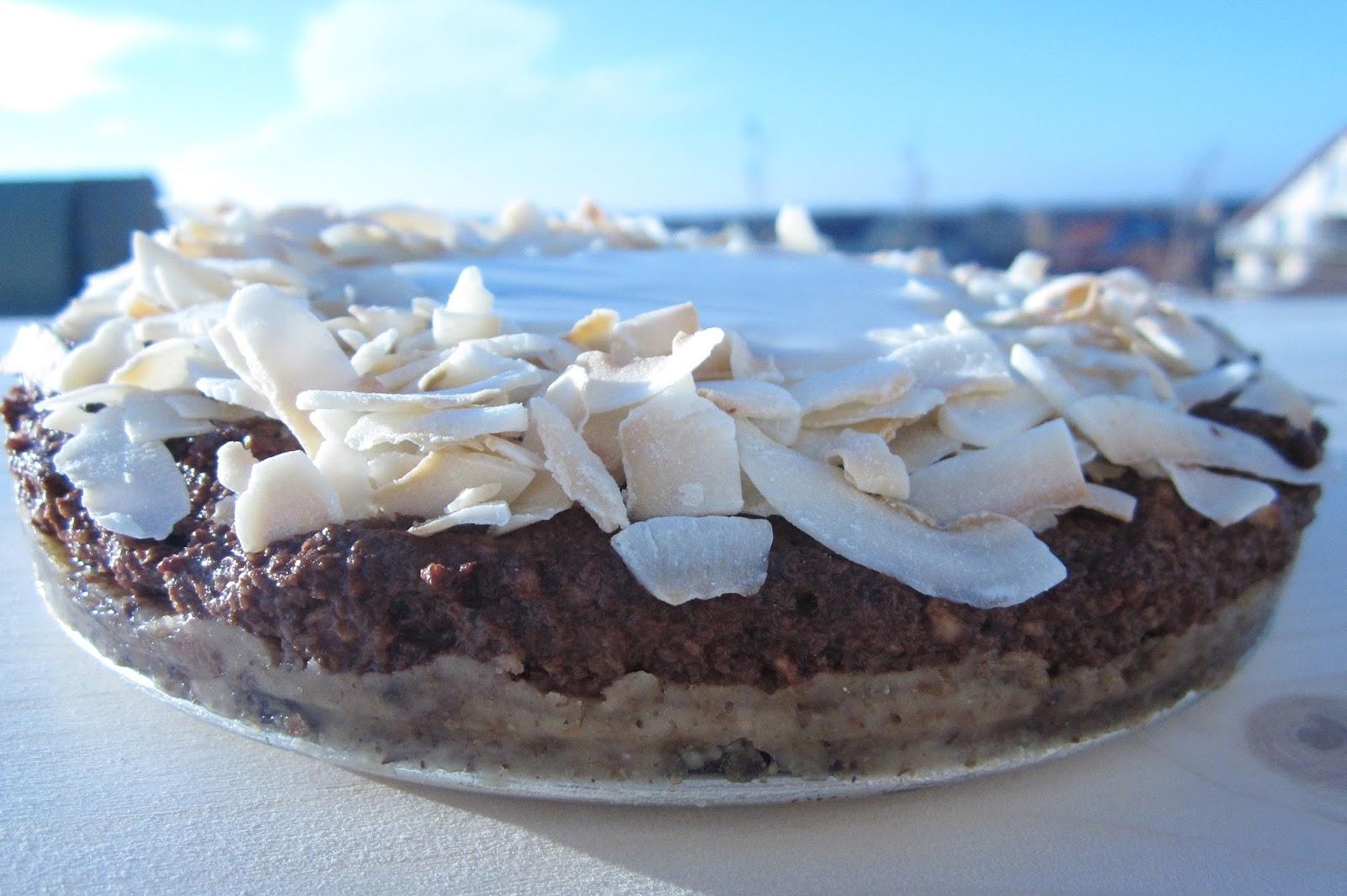 Birthday Cake Raw Vegan Cake Tort Pentru Zi De Natere Tort Raw