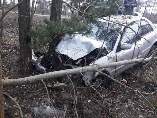 Avarējušā mašīna ietriecās kokā