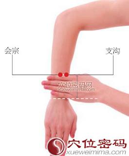 會宗穴位 | 會宗穴痛位置 - 穴道按摩經絡圖解 | Source:xueweitu.iiyun.com