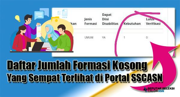 Catat ! Berikut Jumlah Formasi Kosong Yang Sempat Terlihat Saat Portal SSCASN Menampilkan Jumlah Pelamar Terverifikasi