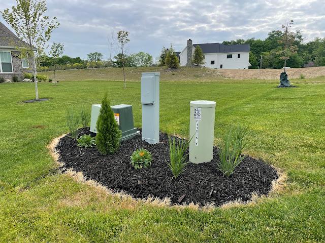 plants around utility boxes
