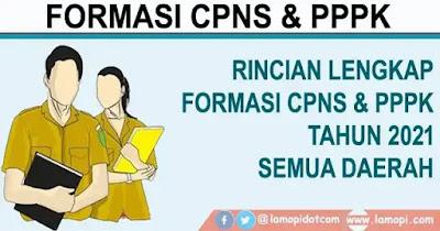 Formasi CPNS dan PPPK 2021