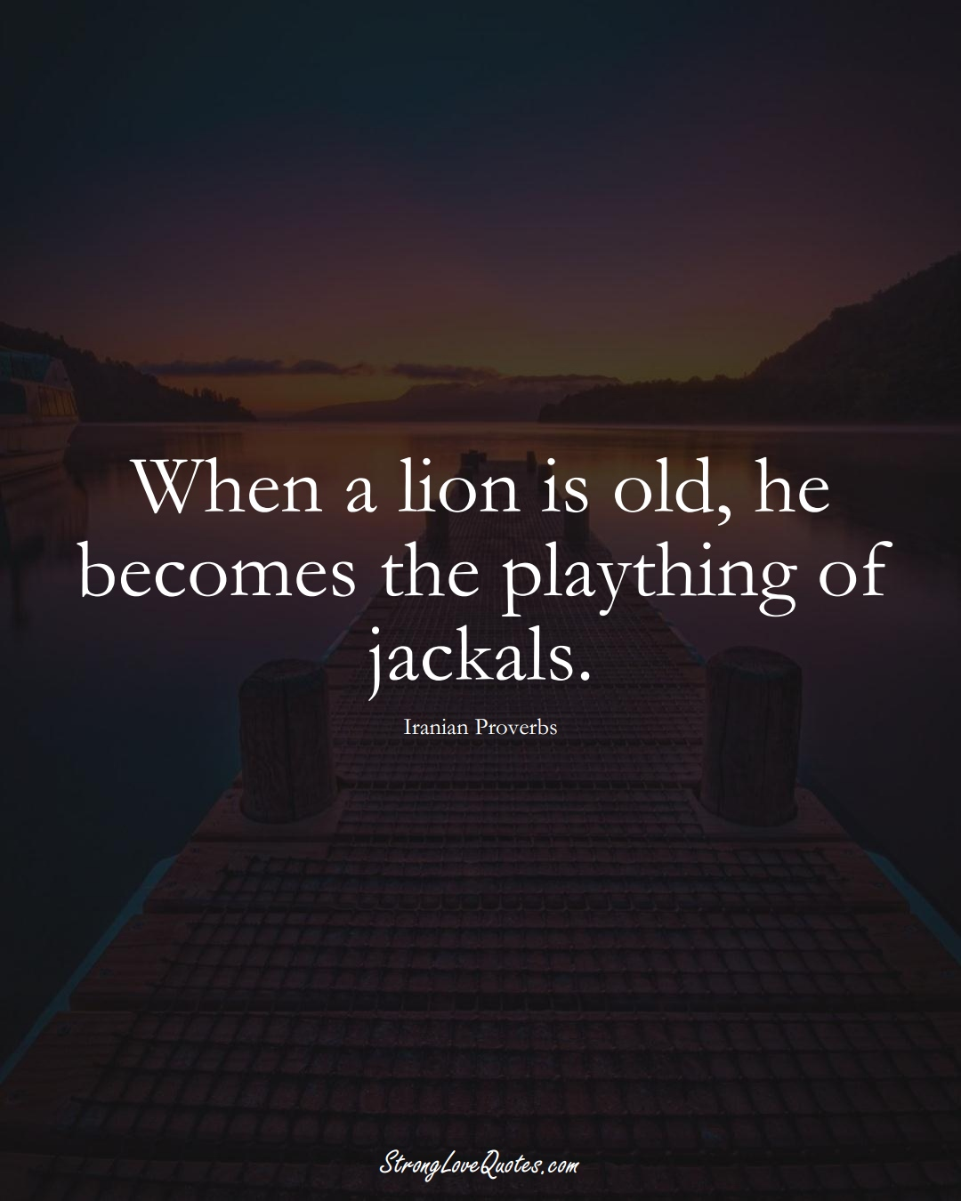 When a lion is old, he becomes the plaything of jackals. (Iranian Sayings);  #MiddleEasternSayings