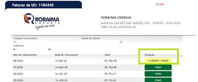 imagem da Pagina de acesso à Segunda via Roraima Energia