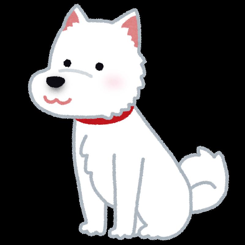 北海道犬のイラスト かわいいフリー素材集 いらすとや