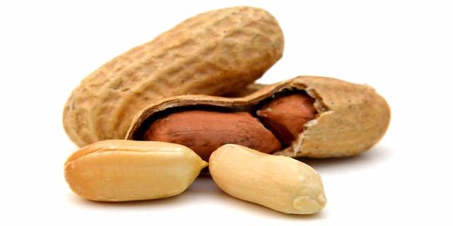 Kacang Bisa Bikin Jerawatan