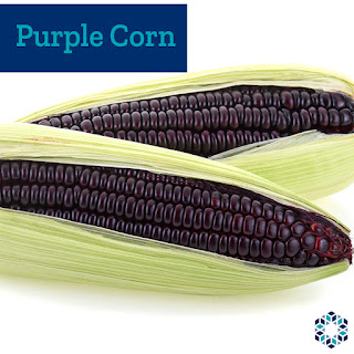 Some varieties of flint corn are purple than blue, common in Peru