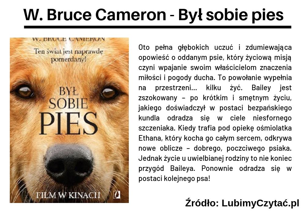 W. Bruce Cameron - Był sobie pies, Cykl książkowy, Marzenie Literackie