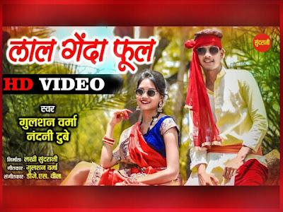 लाल गेंदा फूल - Lal Genda Phool Cg Song Lyrics in Hindi। Gulshan Verma।Nandani Dubey। Aditi Dhruv । DJ As Vil