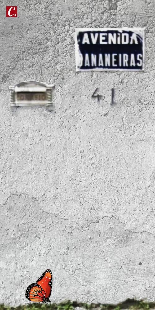 ambiente de leitura carlos romero cronica emerson barros eleicoes paraiba joao pessoa manaira saudosismo mudancas bancas de revista progresso