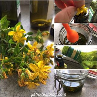 Herstellung von Johanniskrautöl