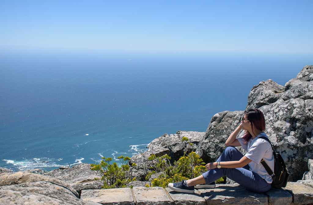 scenery at table mountain, cape point, cape of good hope incape town south africa