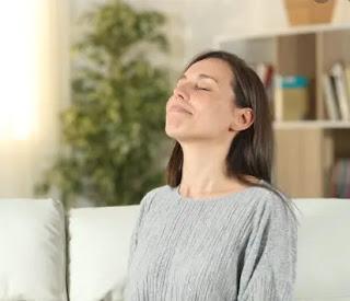How to Purify Air at Home - Naturally?_ichhori.com.png