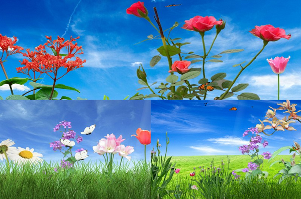 How To Get Live Animated Wallpapers On Your Desktop: Tech Writes: Decorate Your Desktop With Coolest Live