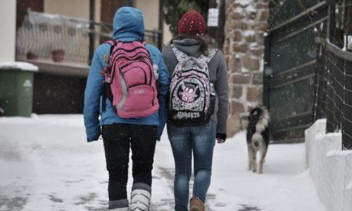 Με τηλεκπαίδευση θα γίνουν την Δευτέρα τα μαθήματα σε όλες τις σχολικές μονάδες που έχει ανασταλεί η λειτουργία λόγω των καιρικών συνθηκών που επικρατούν.