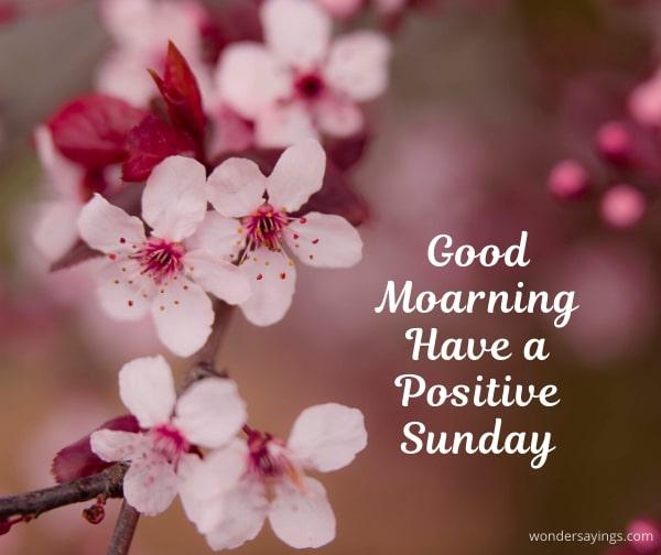 happy-Sunday-flowers