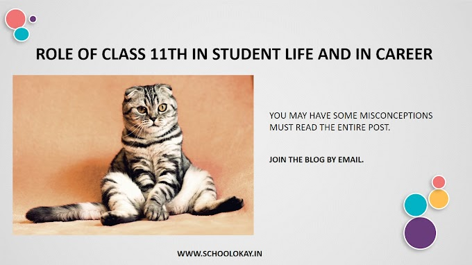 ROLE OF CLASS 11TH IN STUDENT LIFE AND IN CAREER