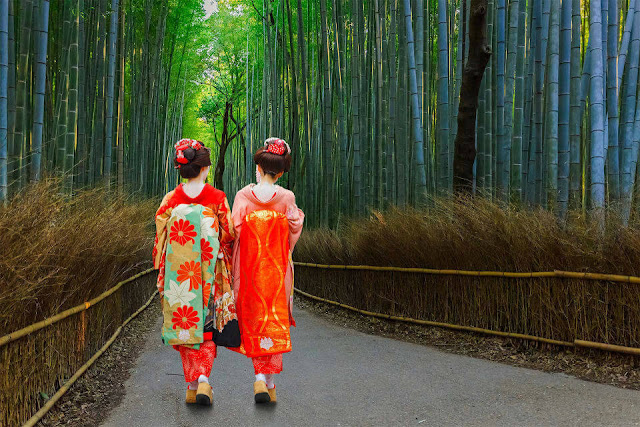 Rừng trúc Sagano Bamboo Groove