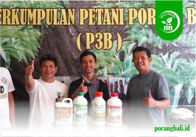 Komunitas Porang Bali