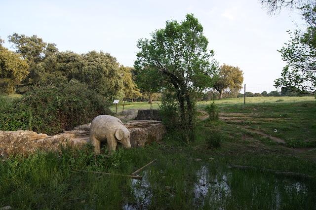 Fuente del Elefante .