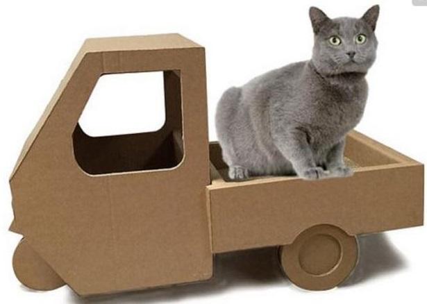 carton et chat 9