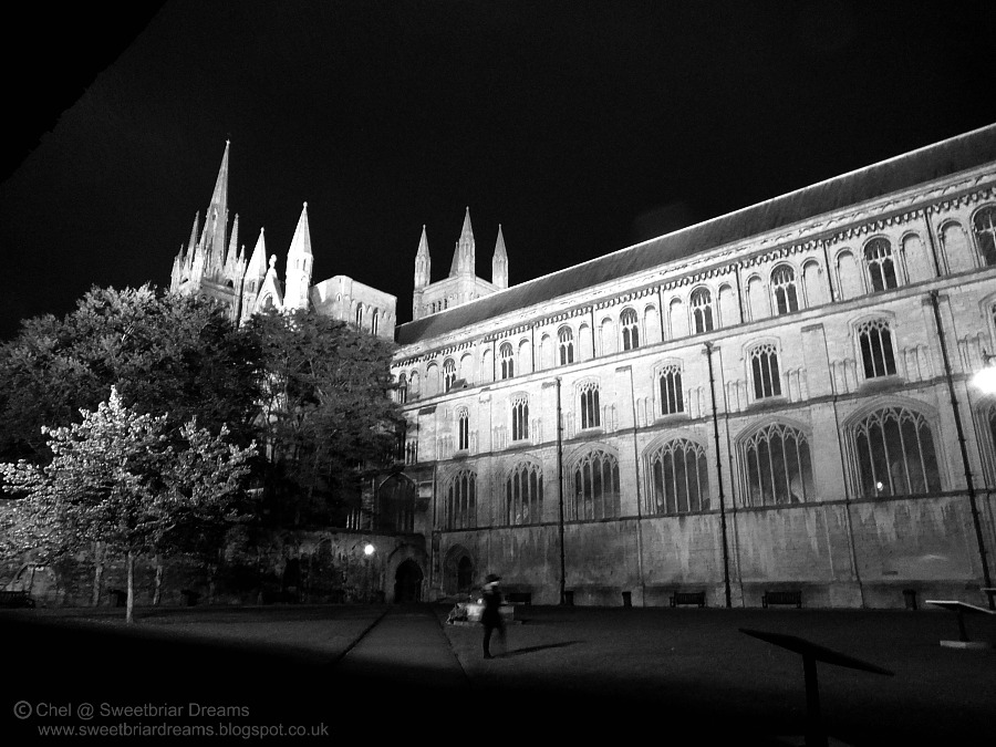 sweetbriar dreams a night at peterborough cathedral. Black Bedroom Furniture Sets. Home Design Ideas