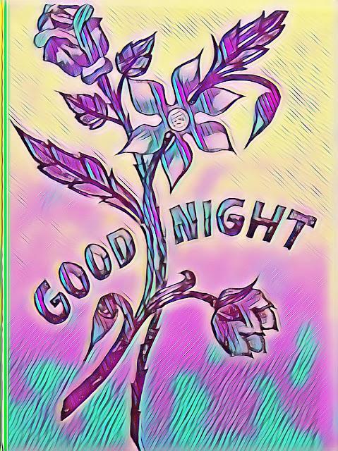 WhatsApp good night & Good morning photos
