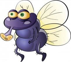 """Фразеологізми зі словом """"муха"""""""