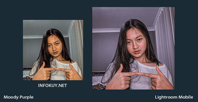 Tutorial Lightroom Moody Purple