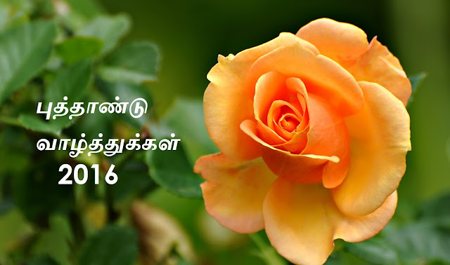 Tamil new year Wallpapers happy tamil new year wishes  happy tamil new year  tamil new   tamil puthandu   tamil puthandu