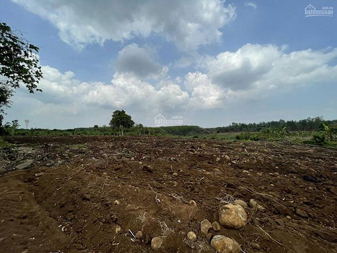 Đất sào Trung Hòa