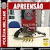 POLÍCIA MILITAR APREENDE ARMA DE FOGO NA ZONA RURAL DE JURU-PB