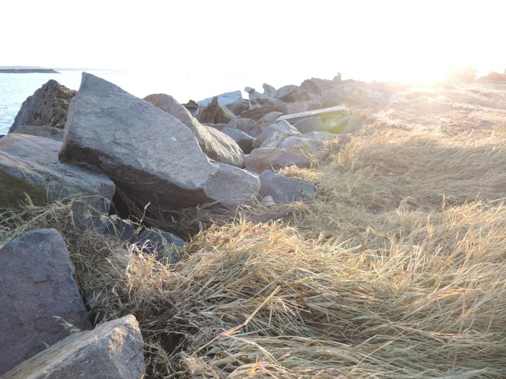 katiecrackernuts.blogspot.com || swansea foreshore