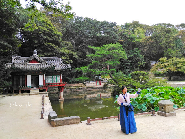 buyongji pond di Changdeokgung Palace & Secret Garden/Huwon (창덕궁과 후원)