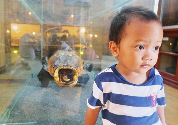 jalan-jalan dengan anak ke museum tanjung pandan belitung